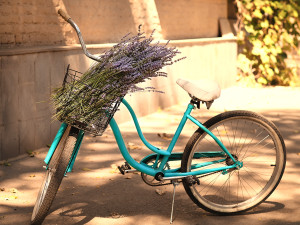 Vintage Bycycle With Basket With Lavender Flowers